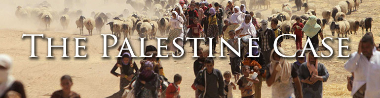 The Palestine Case